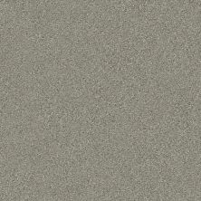 Shaw Floors Simply The Best Montage II Net Tempting Taupe 740A_5E099