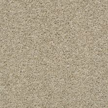 Shaw Floors Value Collections Poised Net Cork 00220_5E102