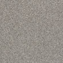 Shaw Floors Value Collections Poised Net Flannel Gray 00713_5E102
