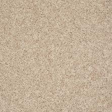 Shaw Floors Break Away (s) Gentle Breeze 00100_5E243
