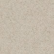 Shaw Floors Break Away (s) Winter White 00110_5E243