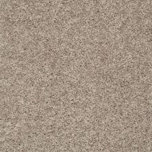 Shaw Floors Break Away (s) Soft Taupe 00501_5E243