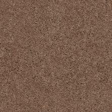 Shaw Floors Break Away (s) Clay 00701_5E243
