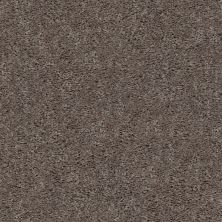 Shaw Floors Break Away (s) Weathered Wood 00710_5E243