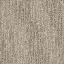 Shaw Floors Simply The Best Easy Fit French Linen 00101_5E254