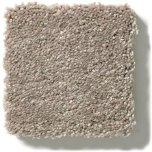 Shaw Floors Simply The Best Solidify I 12′ Natural Contour 00104_5E262