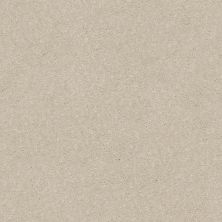 Shaw Floors Simply The Best Solidify II 12′ Bleached 00101_5E264