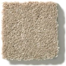 Shaw Floors Simply The Best Solidify II 12′ Raw Lumber 00102_5E264