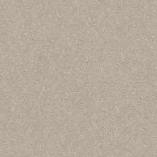 Shaw Floors Simply The Best Solidify II 12′ Dreamy 00103_5E264