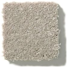 Shaw Floors Simply The Best Solidify II 12′ Greige 00106_5E264