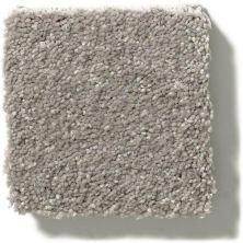 Shaw Floors Simply The Best Solidify II 12′ Tree Bark 00700_5E264