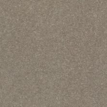 Shaw Floors Solidify II 15′ Natural Contour 00104_5E265