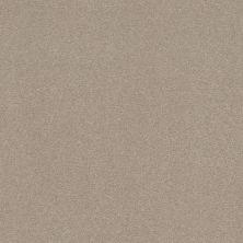Shaw Floors Simply The Best Solidify III 12′ Dreamy 00103_5E266