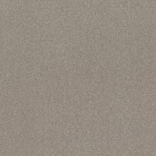 Shaw Floors Simply The Best Solidify III 12′ Greige 00106_5E266