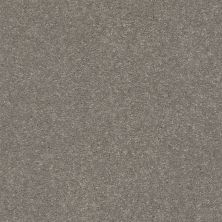 Shaw Floors Simply The Best Solidify III 12′ Tree Bark 00700_5E266