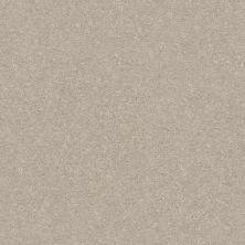 Shaw Floors Solidify III 15′ Dreamy 00103_5E267