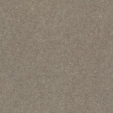 Shaw Floors Solidify III 15′ Natural Contour 00104_5E267