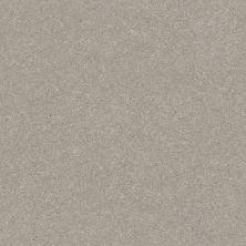 Shaw Floors Solidify III 15′ Greige 00106_5E267