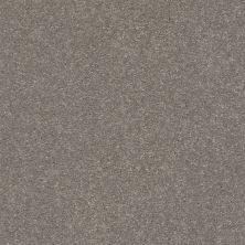 Shaw Floors Solidify III 15′ Tree Bark 00700_5E267