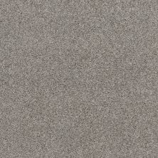 Shaw Floors Bellera Calm Serenity I Split Sediment 00104_5E270