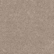 Shaw Floors Bellera Calm Serenity II Washed Linen 00103_5E272