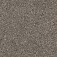 Shaw Floors Bellera Calm Serenity II Dark Maple 00702_5E272