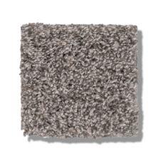 Shaw Floors Bellera Calm Simplicity II Washed Linen 00113_5E273