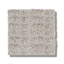 Shaw Floors Bellera Charming Transition Split Sediment 00104_5E274