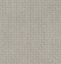 Shaw Floors Bellera Soothing Surround Split Sediment 00104_5E275