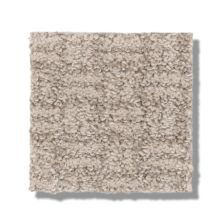 Shaw Floors Bellera Soothing Surround Desert View 00701_5E275