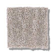Shaw Floors Bellera Nature Within Split Sediment 00104_5E278