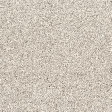 Shaw Floors Bellera Quiet Sanctuary Washed Linen 00103_5E280