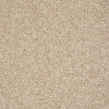 Shaw Floors Value Collections Break Away (s) Net Gentle Breeze 00100_5E282
