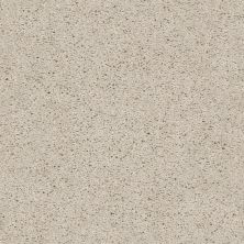Shaw Floors Value Collections Break Away (s) Net Winter White 00110_5E282