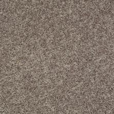 Shaw Floors Value Collections Break Away (s) Net Charcoal 00502_5E282
