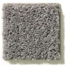 Shaw Floors Value Collections Break Away (s) Net Stone 00511_5E282
