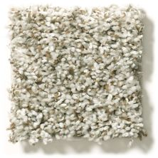 Shaw Floors Value Collections Break Away (t) Net Buff 00110_5E283