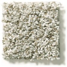 Shaw Floors Value Collections Break Away (t) Net Stepping Stone 00123_5E283