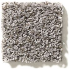 Shaw Floors Value Collections Break Away (t) Net Washed Suede 00511_5E283