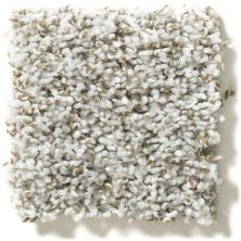 Shaw Floors Value Collections Break Away (t) Net Chrome 00520_5E283