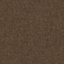 Shaw Floors Heroic Toffee 00753_5E287