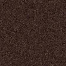 Shaw Floors Heroic Truffle 00792_5E287