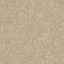 Shaw Floors Valiant Sweet Cream 00102_5E288