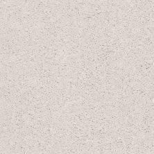 Shaw Floors Suave Canvas 00190_5E289