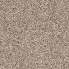 Shaw Floors Suave True Tan 00720_5E289