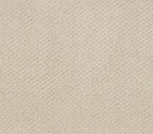 Shaw Floors Foundations Mainstay Washed Linen 00103_5E292