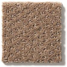 Shaw Floors Foundations Mainstay Raw Wood 00720_5E292