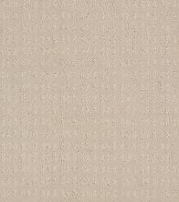 Shaw Floors Value Collections Essential Now Net Butter Cream 00107_5E300