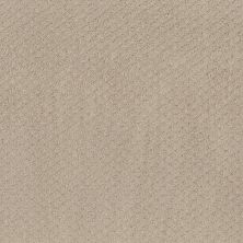 Shaw Floors Value Collections Formalize Net Butter Cream 00107_5E301