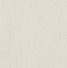 Shaw Floors Value Collections Mainstay Net Serene Still 00101_5E302